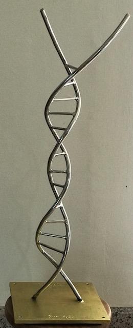 Bicentennial DNA 2019 Stainless Steel [80 cm x 20 cm]