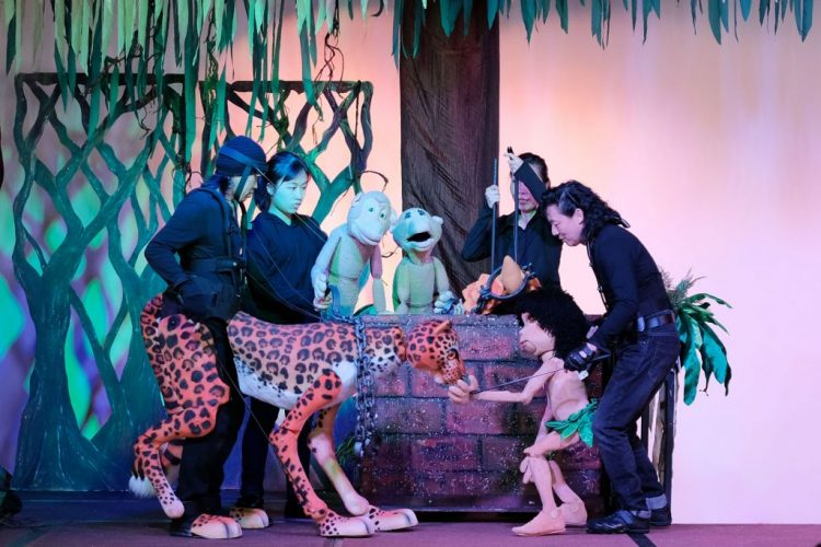 The Jungle Adventure : A Romp on the Wild Side